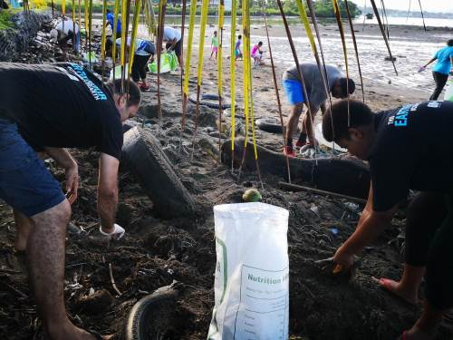 WWF staff and volunteers pick up rubbish on the Lami foreshore. Picture: LICE MOVONO