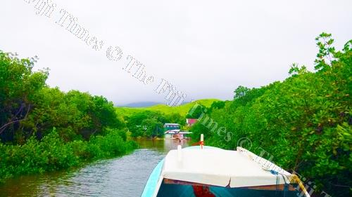 Vione Village on the island of Gau is surrounded by a thick mangrove forest that also provides an entrance to the village. Picture: SIKELI QOUNADOVU