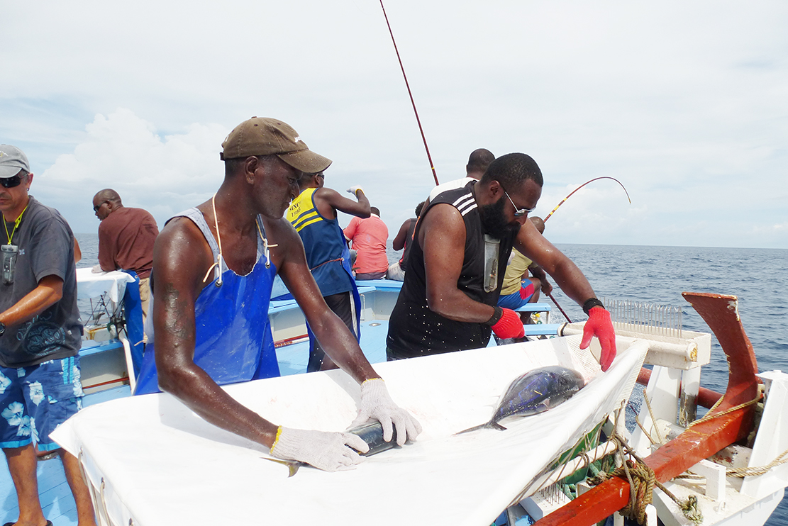 The Pacific Islands Forum Fisheries Agency