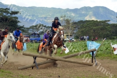 Sharlene Mercer on the horse Africa competes in the Cross Country Race at the Sabeto Races in Nadi. Picture: REINAL CHAND