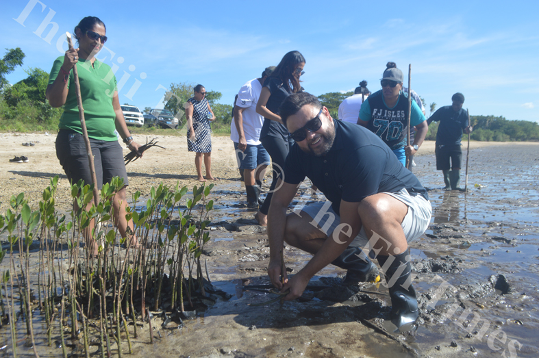 ATS Pacific – Allied Tour Services General Manager Leigh Howard plant mangroves at Saweni Beach in Lautoka. Picture: REINAL CHAND