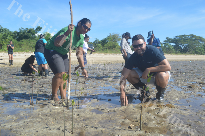 ATS Pacific – Allied Tour Services General Manager Leigh Howard (right) and Sushila Pillay plant mangroves at Saweni Beach in Lautoka. Picture: REINAL CHAND