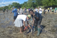 Isimeli Bukalidi (right) and Ekama Masi join the ATS Pacific – Allied Tour Services colleagues plant mangroves at Saweni Beach in Lautoka. Picture: REINAL CHAND