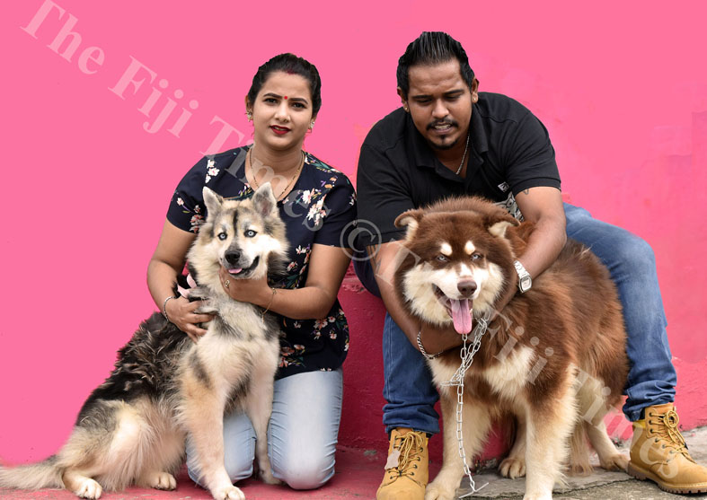 Wife Ajeshni and husband Rajneel Prasad with their husky breed dogs at their residence in Nabua. Picture: RAMA