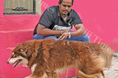 Rajneel Prasad with his husky breed dog at his residence in Nabua. Picture: RAMA
