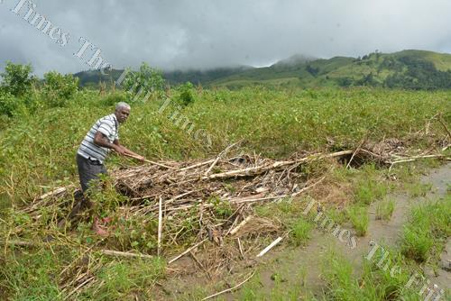 Saten Kumar clears debris from his eggplant farm in Bilalevu, Sigatoka. Picture: BALJEET SINGH