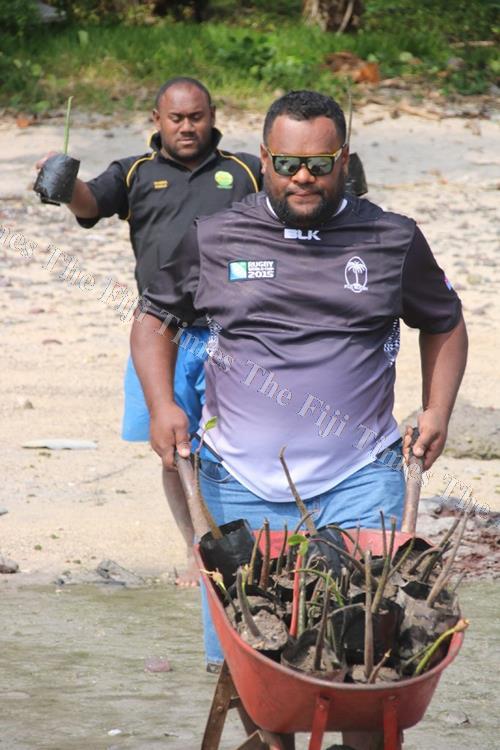 Fiji replanting efforts